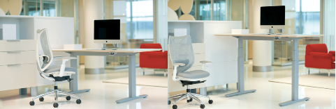 Livello Sit Stand - example
